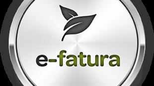 GMS.NET e-Fatura Modülü